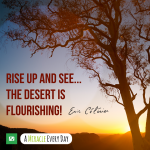 Rise up and see...the desert is flourishing!