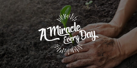 You truly are a miracle!