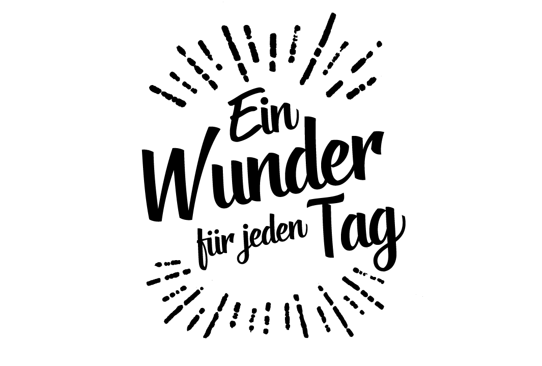 Logo AMED German